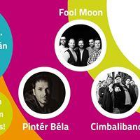 Fool Moon koncert a Tgas Tr Fesztivlon