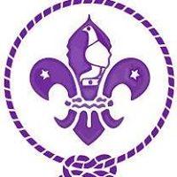 The Scout Association of Zimbabwe
