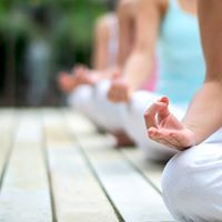 Summer YOGA and Meditation at Wellness Path