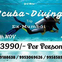 Scuba Diving Trip 3rd Nov
