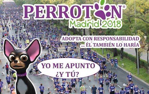 Perrotn Madrid 2018