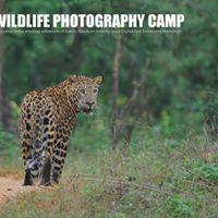 Wildlife Photography camp - Kabini October 2017