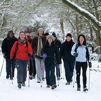 Free Nordic Walking Taster session - Haldon Forest Park