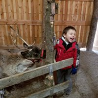 Last Chance to Meet the Reindeer Before Christmas