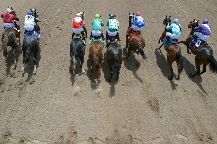 Live Quarter Horse Racing Opening Night