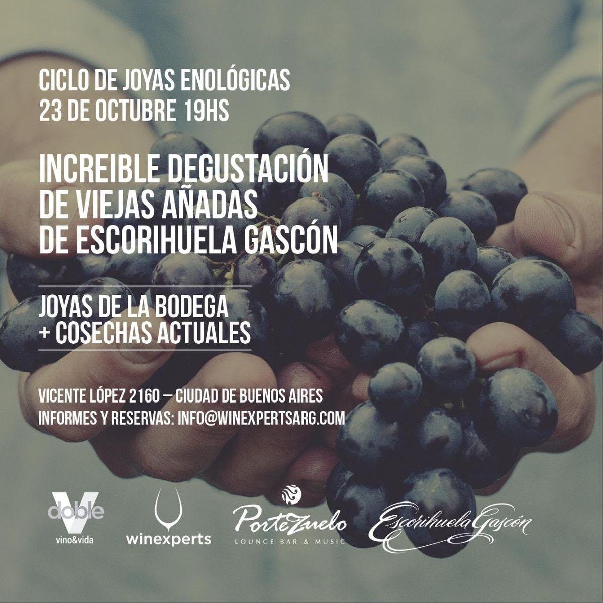 Cata de viejas aadas Bodega Escorihuela Gascon