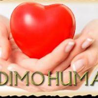 Humanitarno vee