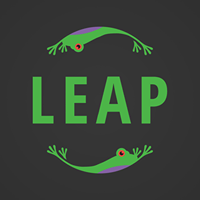 LEAP - The Business Obstacle Course