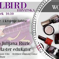 Brillbird Workshop- postavljanje i krojenje ablone