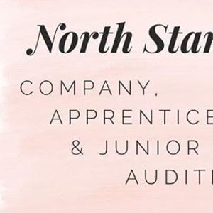 Company Apprentice &amp Junior Company Auditions