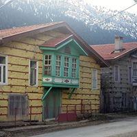 Altnbeik maaras Ormana dmeli evleri 11 km yry