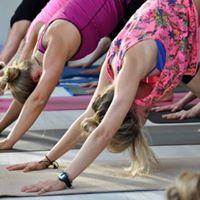 MOVE  Yoga Basics Workshop