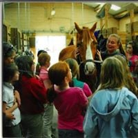 After School Horse Discovery Program