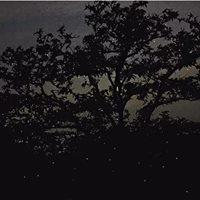 WW - Fireflies Trek to Prabalmachi