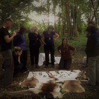 Linking Forest School to the Curriculum - CPD