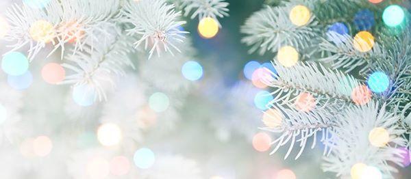 Julebord med Symbiosen