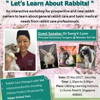 Lets Learn About Rabbits