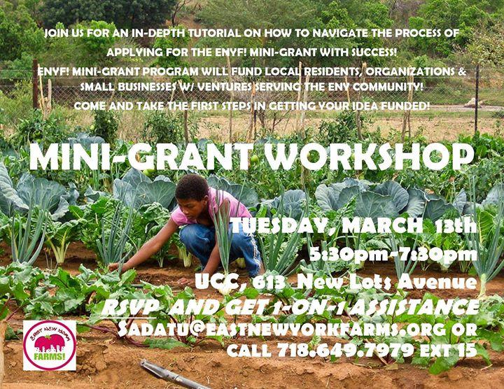 ENYF Mini-Grant Workshop