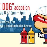 Dog Adoption Events In Las Vegas