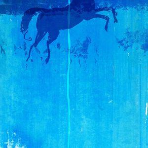 Le cheval de bleu - 5  10 ans