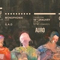 Burudu - Ditties (Live)  Auro Delhi