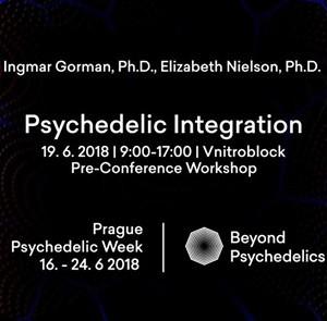 Psychedelic Integration  Prague Psychedelic Week 2018