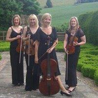 Concerteenies String Quartet