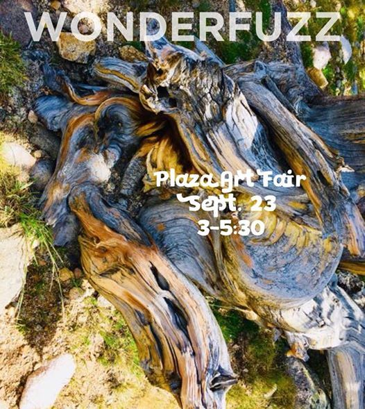 Wonderfuzz-Plaza Art Fair