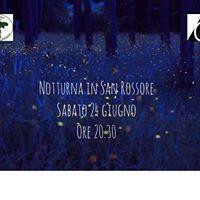 Notturna in San Rossore