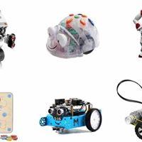 Maestra come sta Bee BotLe possibilit della robotica educativa