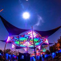 TRIPD3LIC festival 3