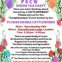 PSCW English Style Tea Party at Sierra Brooks Lodge Loyalton