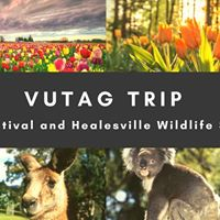 VUTAG trip to Tulip Festival and Healesville Wildlife Sanctuary