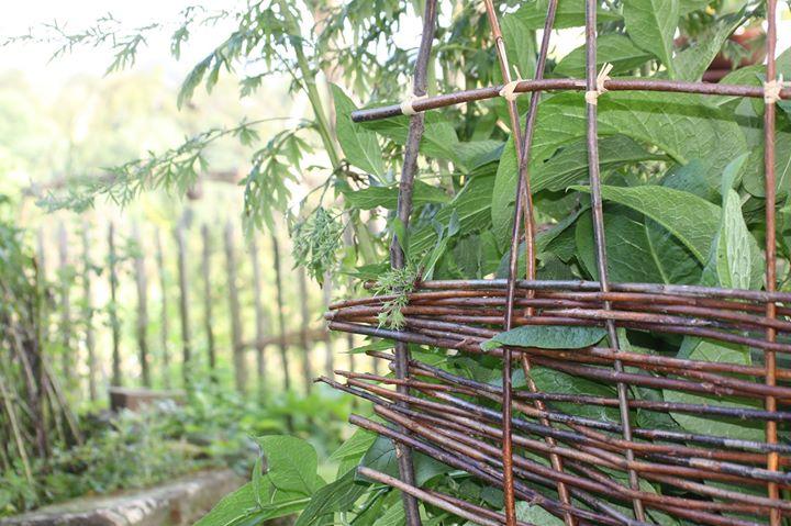 Gartendeko Aus Weidengeflecht, rankhilfen, gartendeko, obelisk aus weide flechten at animaplanta, Design ideen