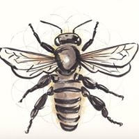 Bugonia Insect Art Exhibition Extended