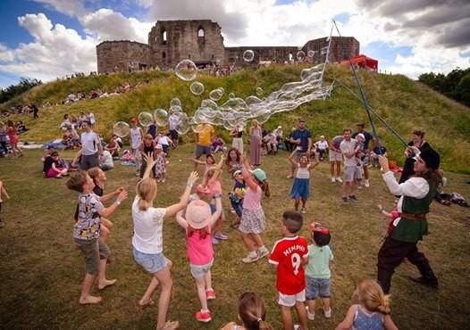 Stafford Castles Summer Sunday