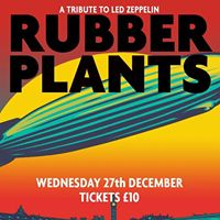 Rubber Plants - A Tribute to Led Zeppelin