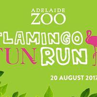 Flamingo Fun Run - Adelaide Marathon Festival