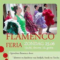 Flamenco Feria