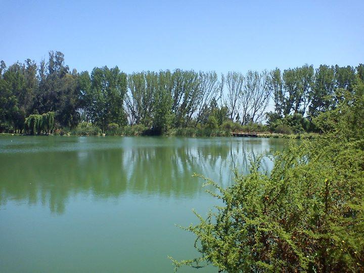 Pedaleo Laguna Caren (Pudahuel) | Santiago