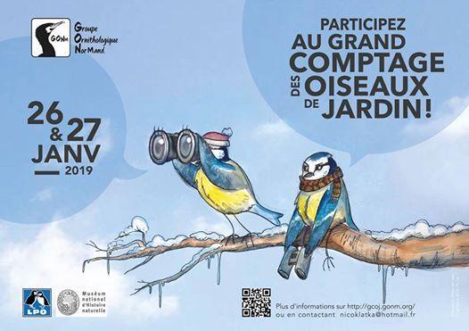 Grand Comptage des Oiseaux de Jardin 2019