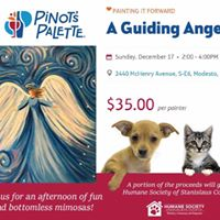 Pinots Palette Painting &amp Drinks - Fundraiser for HSSC
