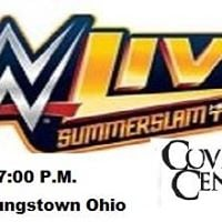 July 30 WWE Live Summerslam Heatwave Tour Youngstown Ohio