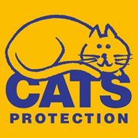 Cats Protection Car Boot at Foxhall CC
