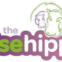 The Wise Hippo Hypnobirthing &amp Birth Preparation Classes