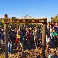 Juntos Somos un Bosque - Edicin Vicente Lpez 2