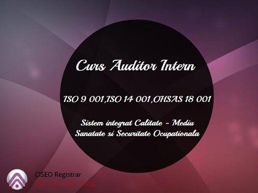 Curs Auditor Intern Sistem Integrat