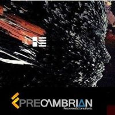 Precambrian Company