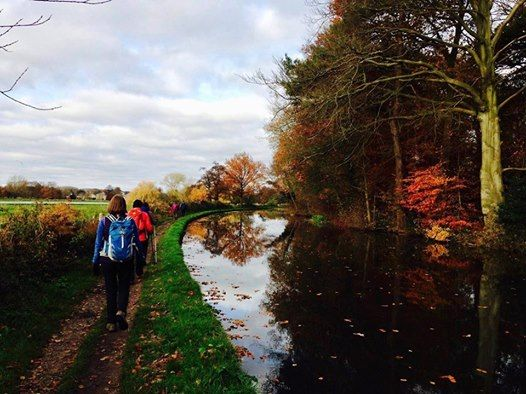 Cannock Chase and Canals Walk