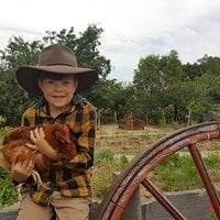 A Day at the Farm - Kids Day